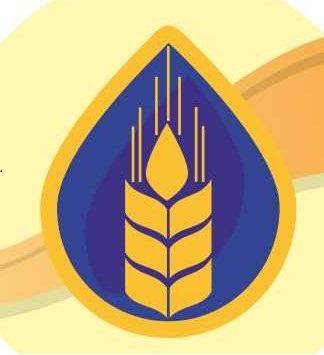 Белково-витаминно-минеральные концентраты (БВМК) для КРС